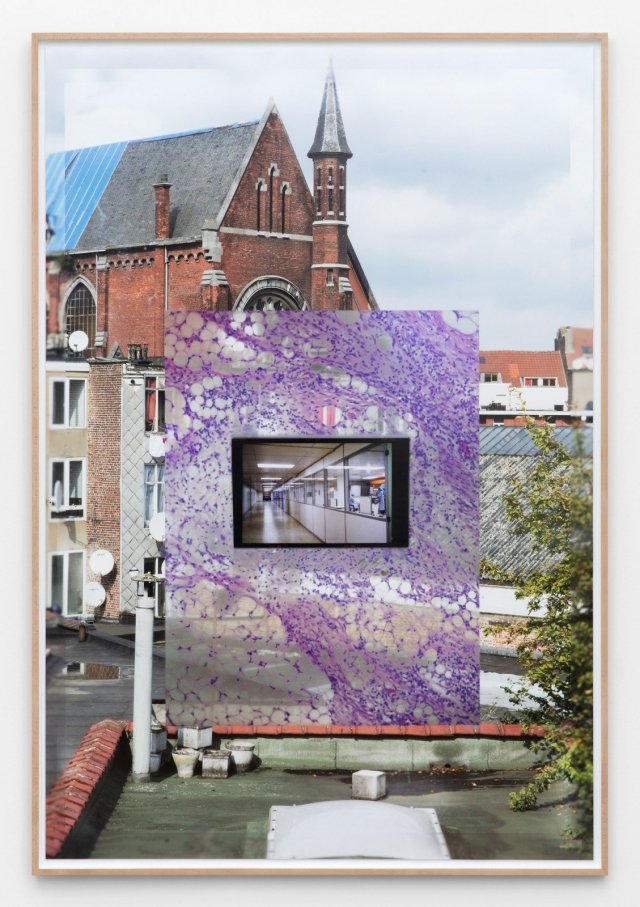 Marina Pinsky, Contaminated View 2, 2015. Archival inkjet print, 65 x 44 1/8 inches, 165.3 x 112 cm. Edition 3 + 1 AP. Courtesy C-L-E-A-R-I-N-G Brussels.