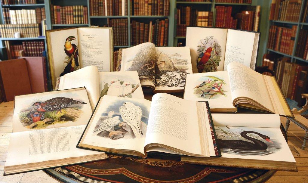 Shapero Rare Books Gould Birds