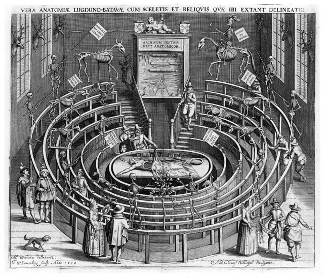 The anatomical theatre at Leiden